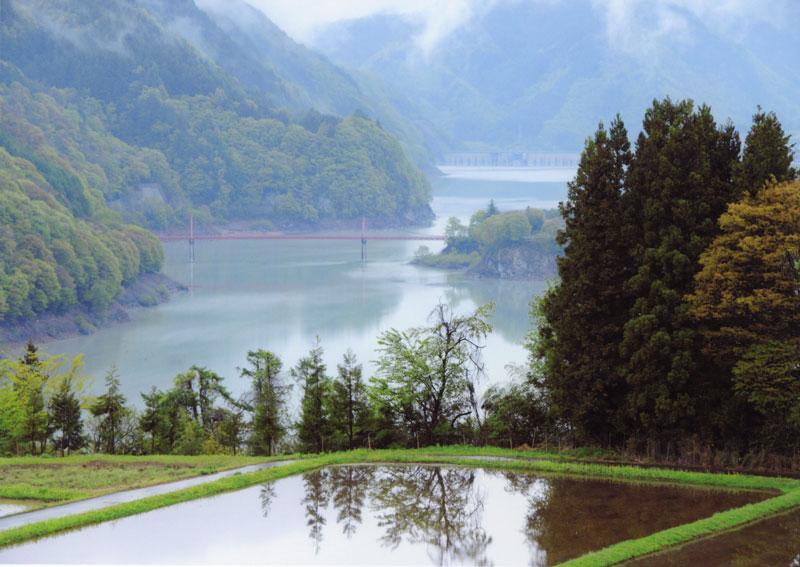 春の山並みが、広大な美和湖によく映えます。【時期:5月中旬/場所:長谷黒河内】