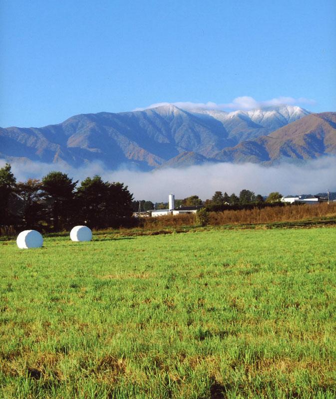 広大な大地の背景には、中央アルプスの将棊頭山に初雪が降り始めています。【時期:10月下旬/場所:南箕輪村南原】